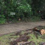 Három műszaki mentéssel járt a tegnapi vihar
