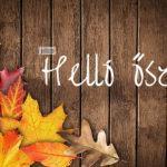 Négy kiegészítő az őszi mindennapokra