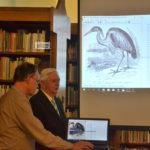 Ha már jönnek: mit kell tudni a gólyákról?